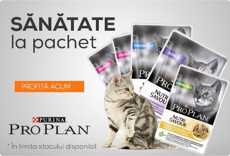 Pro Plan Pisici