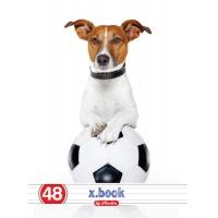 Caiet A5 48 file dictando, motiv Cool Dog