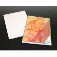 Bloc desen cu spirala, A4, 100 file - 90g/mp, pentru schite creion, AURORA Esquisse