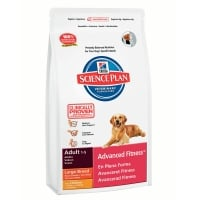 HILL'S SP Canine Adult Large Breed cu Pui 3 kg