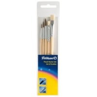 Set 5 Pensule Starter ( S24:2,4,6 + S613F:6,10), Pelikan