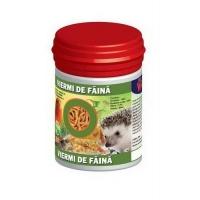 Viermi de Faina Uscati, 30 ml