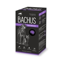 BACHUS Calm&Brave, suplimente sistem nervos câini și pisici, 60cpr