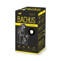 BACHUS Immunity&Resistance, suplimente imunitare câini și pisici, 60cpr