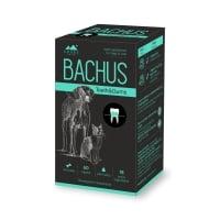 BACHUS Teeth&Gums, suplimente igienă orală, 60cpr