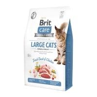BRIT Care Large Cats Power & Vitality L-XL, Rață și Pui, hrană uscată fără cereale pisici, 2kg