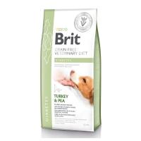 BRIT GF Veterinary Diet Diabetes, Curcan cu Mazăre, dietă veterinară câini, pachet economic hrană uscată fără cereale, afecțiuni metabolice (diabet), 12kg x 2