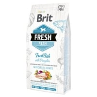Brit Fresh Fish & Pumpkin Adult Large 2.5 Kg