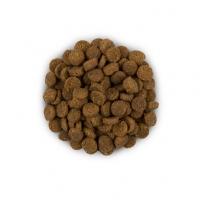 Hill's PD Feline i/d - Probleme Gastrointestinale, 400 g