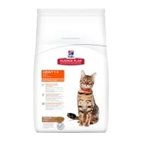 Hill's SP Feline Adult Optimal Care cu Miel, 5 kg