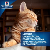 Hill's PD Feline c/d Urinary Stress Somon, 85 g