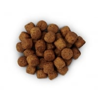 Hill's PD Canine j/d Probleme Articulare, 2 kg