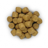 Hill's PD Canine l/d Probleme Hepatice, 2 kg