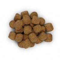 Hill's PD Canine r/d Obezitate, 12 kg
