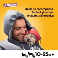 PEDIGREE Jumbone Medium, recompense câini, Vită și Pasăre, batoane, 2 buc, 180g