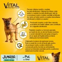 PEDIGREE Vital Protection Junior L, Pui și Orez, pachet economic hrană uscată câini junior, 15kg x 2