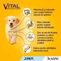 PEDIGREE Vital Protection Junior, Pui, pachet economic plic hrană umedă câini junior, (în aspic), 100g x 30