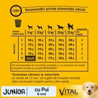 PEDIGREE Vital Protection Junior, Pui și Orez, hrană uscată câini junior, 15kg