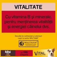 PEDIGREE Vital Protection Mini Adult, Vită și Legume, hrană uscată câini, 12kg