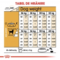 Pachet 2 x Royal Canin Labrador Retriever Adult, 12 kg