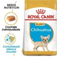 Royal Canin Chihuahua Junior, 500 g