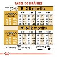 Royal Canin Golden Retriever Junior, 3 kg