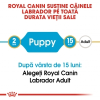 Royal Canin Labrador Retriever Puppy, 12 kg