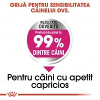 Royal Canin Mini Exigent 3 Kg