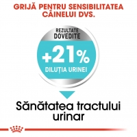Hrana Royal Canin Mini Urinary Care, 8 Kg