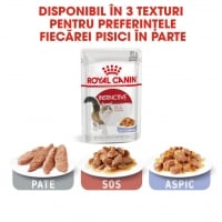 Royal Canin Adult Instinctive in Jelly, 85 g