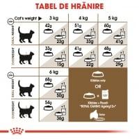 Royal Canin Ageing, 12 +, hrană uscată pisici senior, 4kg