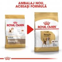 Royal Canin Beagle Adult, hrană uscată câini, 3kg