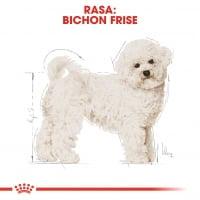 Royal Canin Bichon Frise Adult, hrană uscată câini, 1.5kg