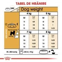 Royal Canin Bichon Frise Adult, hrană uscată câini, 500g