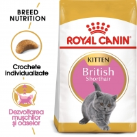 Royal Canin British Shorthair Kitten, 2 kg