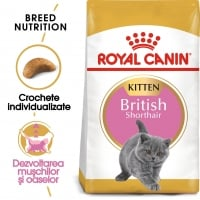 Royal Canin British Shorthair Kitten, hrană uscată pisici junior, 400g