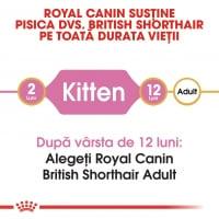 Royal Canin British Shorthair Kitten, hrană uscată pisici junior, 2kg