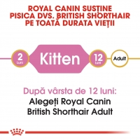 Royal Canin British Shorthair Kitten, pachet economic hrană uscată pisici junior, 2kg x 2
