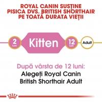 Royal Canin British Shorthair Kitten, 2 kg