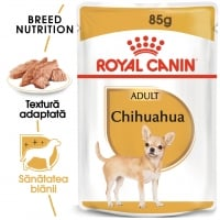 Royal Canin Chihuahua Adult, plic hrană umedă câini (pate), 85g