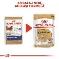 Royal Canin Chihuahua Adult, bax hrană umedă câini (pate), 85g x 12