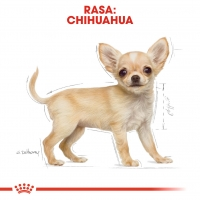 Royal Canin Chihuahua Puppy, hrană uscată câini juniori, 1.5kg