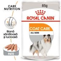 Royal Canin Coat Care Adult, plic hrană umedă câini, blană sănătoasă și lucioasă, (pate), 85g