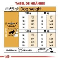 Royal Canin Cocker Adult, hrană uscată câini, 3kg