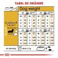 Royal Canin Dachshund Adult, hrană uscată câini Teckel, 1.5kg
