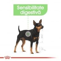 Royal Canin Digestive Care Adult, bax hrană umedă câini, confort digestiv, (pate), 85g x 12