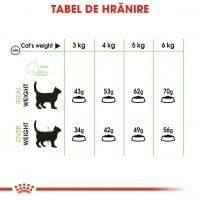 Royal Canin Digestive Care Adult, hrană uscată pisici, confort digestiv, 2kg