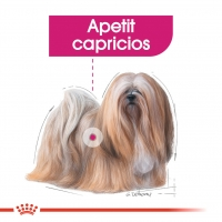 Royal Canin Exigent Adult, bax hrană umedă câini, apetit capricios, (pate) 85g x 12
