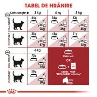 Royal Canin Fit32 Adult, hrană uscată pisici, activitate fizică moderată, 10kg