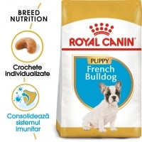 Royal Canin French Bulldog Puppy, hrană uscată câini junior, 3kg